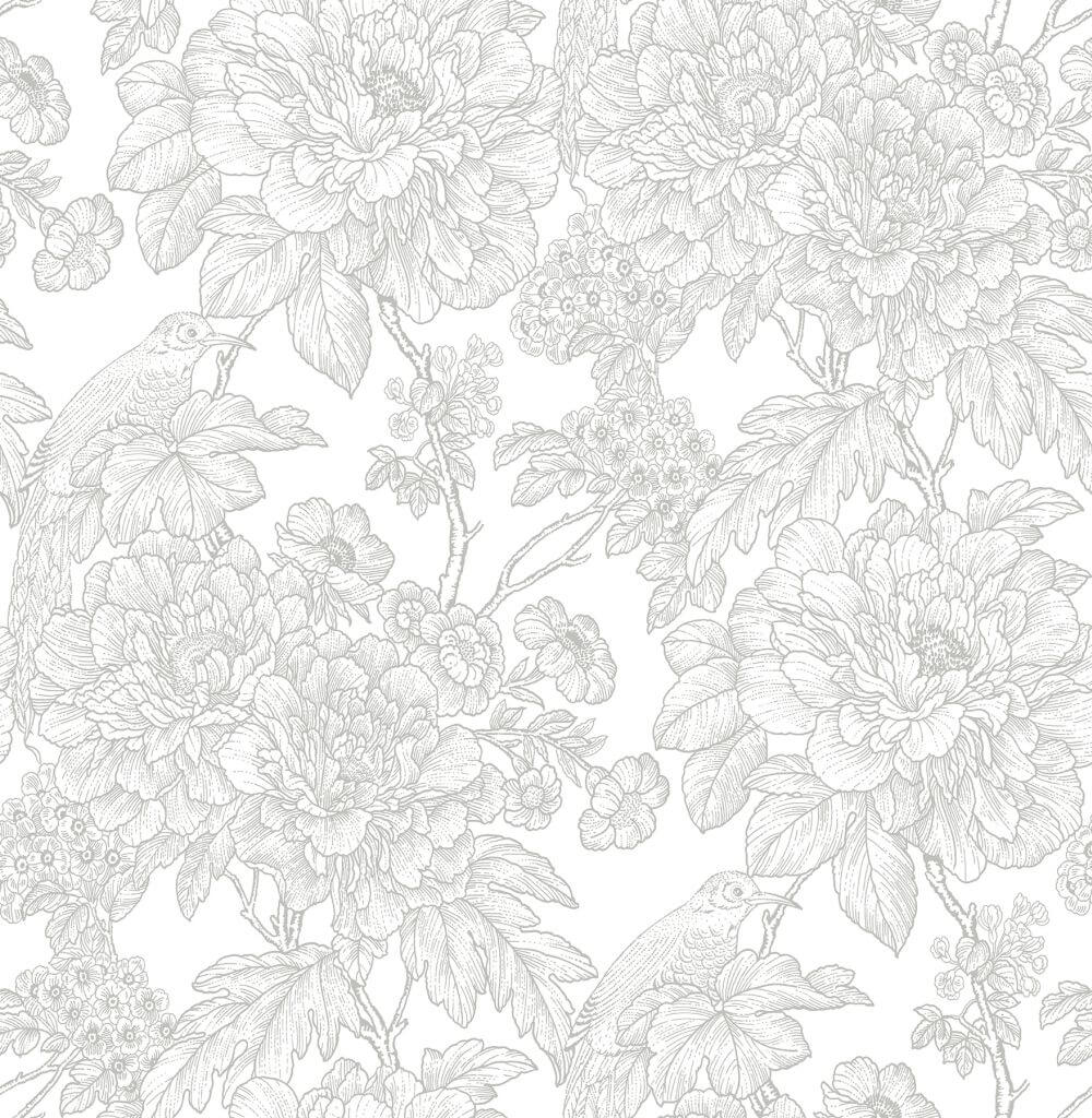 A Street Prints Birds of Paradise Grey Wallpaper - Product code: FD25412