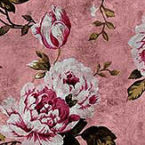 Walls by Patel Wild Roses 4 Pink Mural - Product code: DD113913