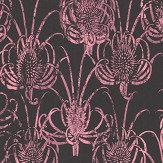 Christian Lacroix Les Centaurees Pink/ Black Wallpaper - Product code: PCL7027/06