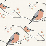 Lorna Syson Bullfinch Pink Wallpaper - Product code: BUW