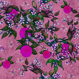Walls by Patel Grapefruit Tree 2 Pink Mural - Product code: DD114263