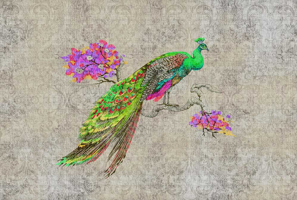 Peacock 1 Mural - Grey / Multi coloured - by Walls by Patel