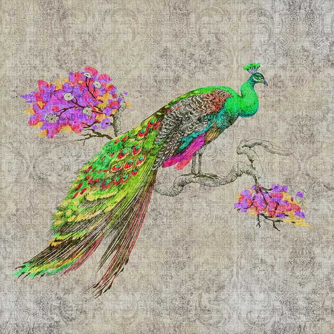 Walls by Patel Peacock 1 Grey / Multi coloured Mural - Product code: DD114308