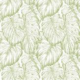 Graham & Brown Tropical Parakeet Wallpaper - Product code: 103766