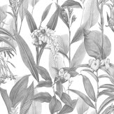 Graham & Brown Botanical Shadow Wallpaper - Product code: 103801