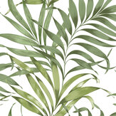 Graham & Brown Yasuni Lush Green Wallpaper - Product code: 105662