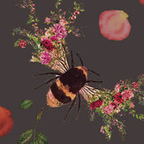 Hattie Lloyd Bee Bloom Charcoal Wallpaper - Product code: HLBBC6