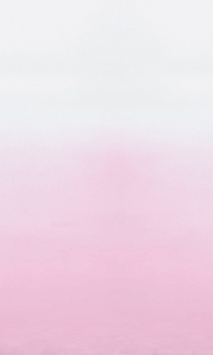 Saraille Mural - Pale Rose - by Designers Guild