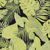 Zoom by Masureel Tropical Jungle Wallpaper - Product code: LAV106