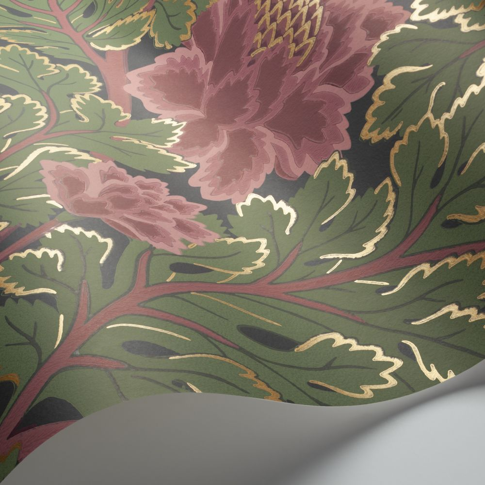 Aurora Wallpaper - Rose / Forest Green / Charcoal - by Cole & Son