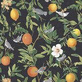 Graham & Brown Amalfi Umore Wallpaper - Product code: 105642