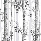Graham & Brown Albero Black / White Wallpaper - Product code: 106424