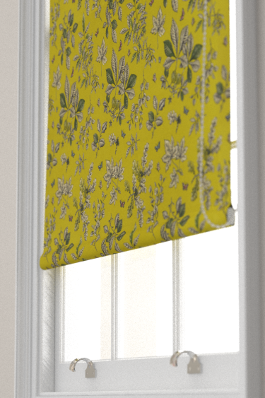 Clarke & Clarke Hortus Chartreuse Blind - Product code: F1329/03