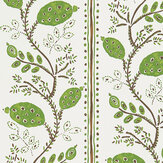 Nina Campbell Pomegranate Trail Green/ Chocolate Wallpaper - Product code: NCW4390-03