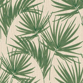 Albany Aurora Palm Green Wallpaper - Product code: 4990