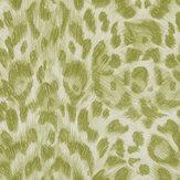 Clarke & Clarke Felis Green Wallpaper - Product code: W0115/05