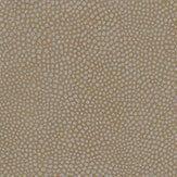 Osborne & Little Mako Taupe Wallpaper - Product code: W6303-02