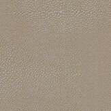 Osborne & Little Zingrina Metallic Pewter Wallpaper - Product code: W6582-02