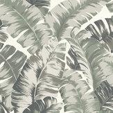 Albany Banana Palm Grey / Green Wallpaper - Product code: 535600