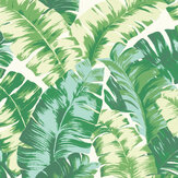 Albany Banana Palm Green Wallpaper - Product code: 535648