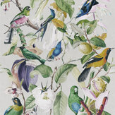 Mind the Gap Tropical Birds White / Multi Mural - Product code: WP20172