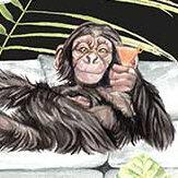 Graduate Collection Monkey Business Black Wallpaper - Product code: TB1MONKBLA