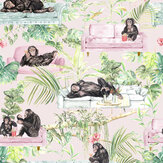 Graduate Collection Monkey Business Pink Wallpaper - Product code: TB1MONKPIN