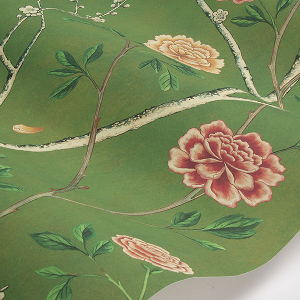 Wild Rose Chinensis Wallpaper - Olive Grove - by Sand & Sushi