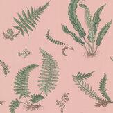 G P & J Baker Ferns Blush Wallpaper - Product code: BW45044/11