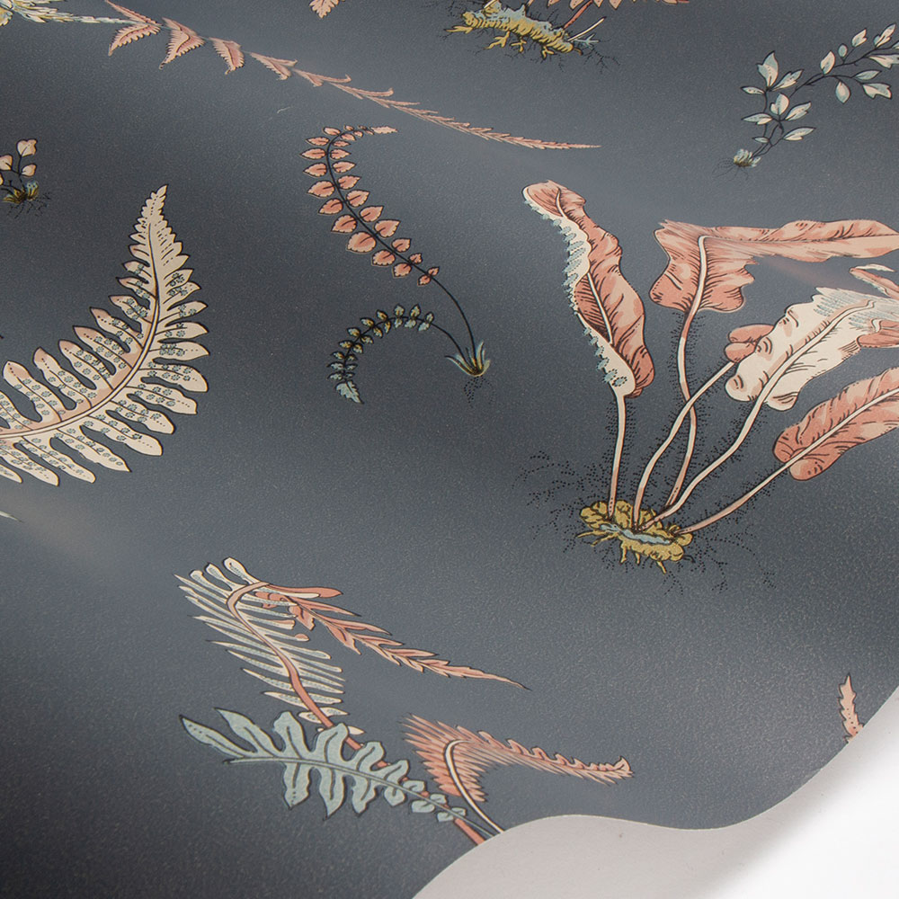 Ferns Wallpaper - Coral / Charcoal - by G P & J Baker