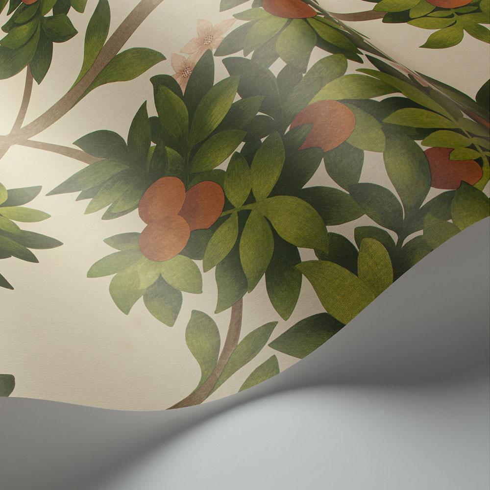 Cole & Son Orange Blossom Orange & Spring Green on Parchment Wallpaper - Product code: 117/1001