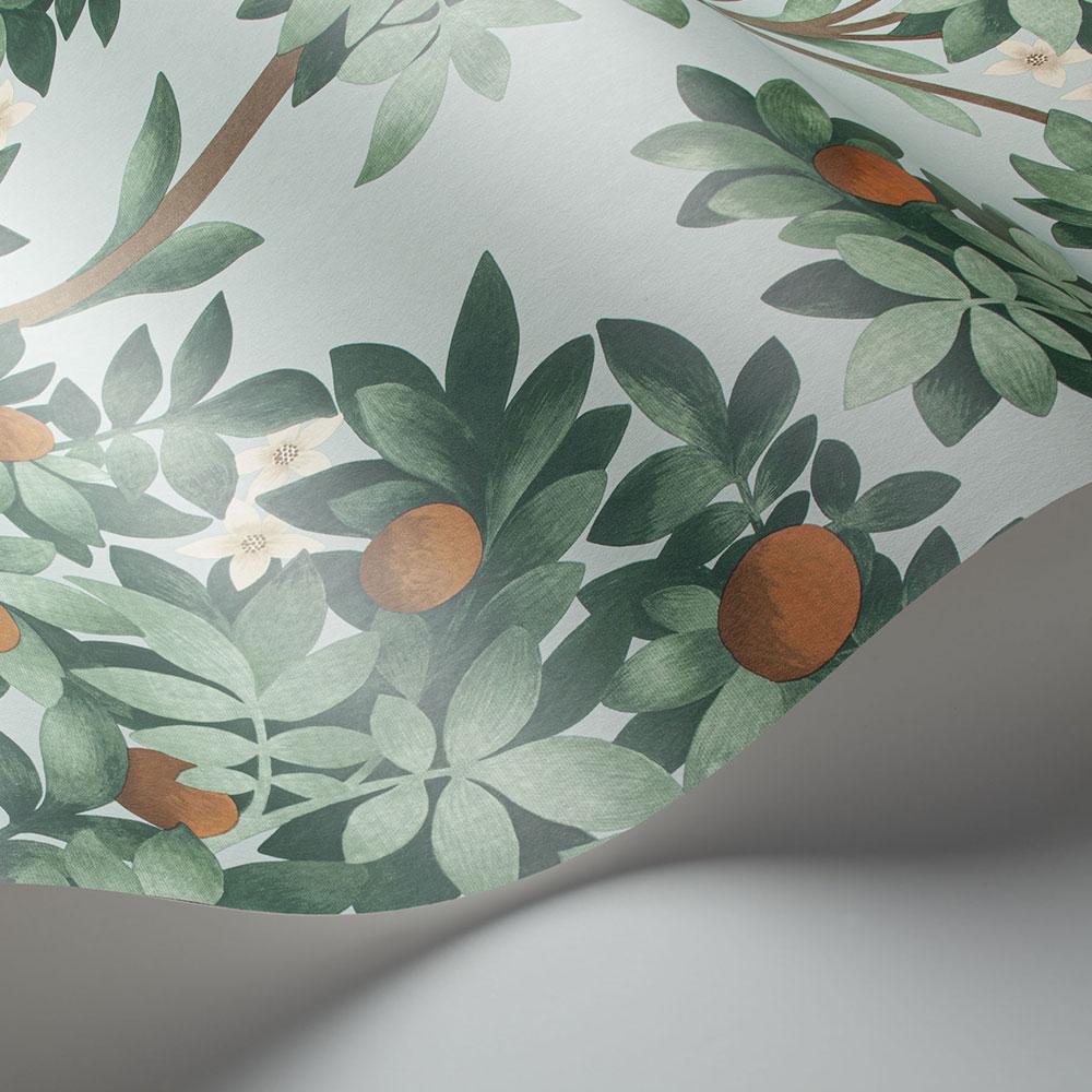 Orange Blossom Wallpaper - Burnt Orange & Mint on Seafoam - by Cole & Son