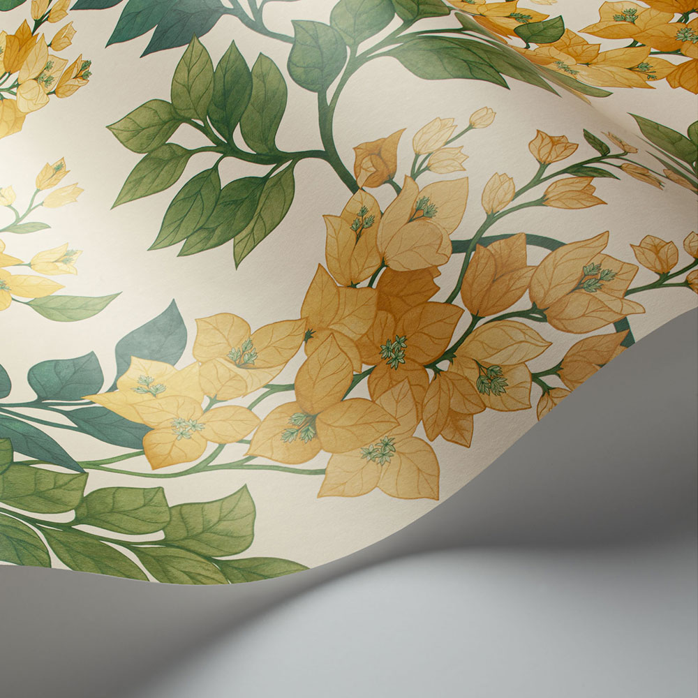 Bougainvillea Wallpaper - Marigold, Leaf Green & Emerald on Parchment - by Cole & Son