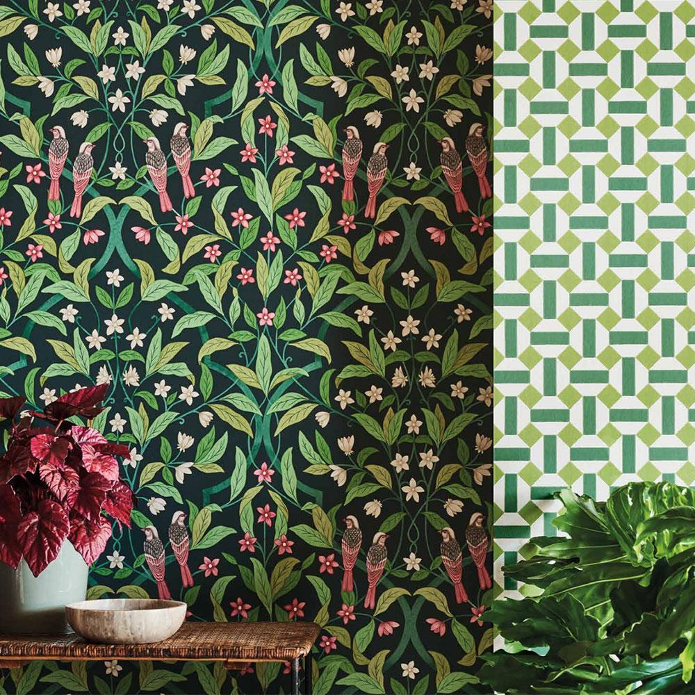 Jasmine & Serin Symphony Wallpaper - Rose & Racing Car Green on Dark Viridian - by Cole & Son