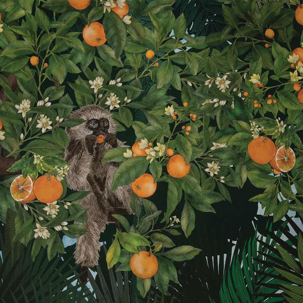 Matthew Williamson Tiger Grove Jungle Mural - Product code: W7492-01