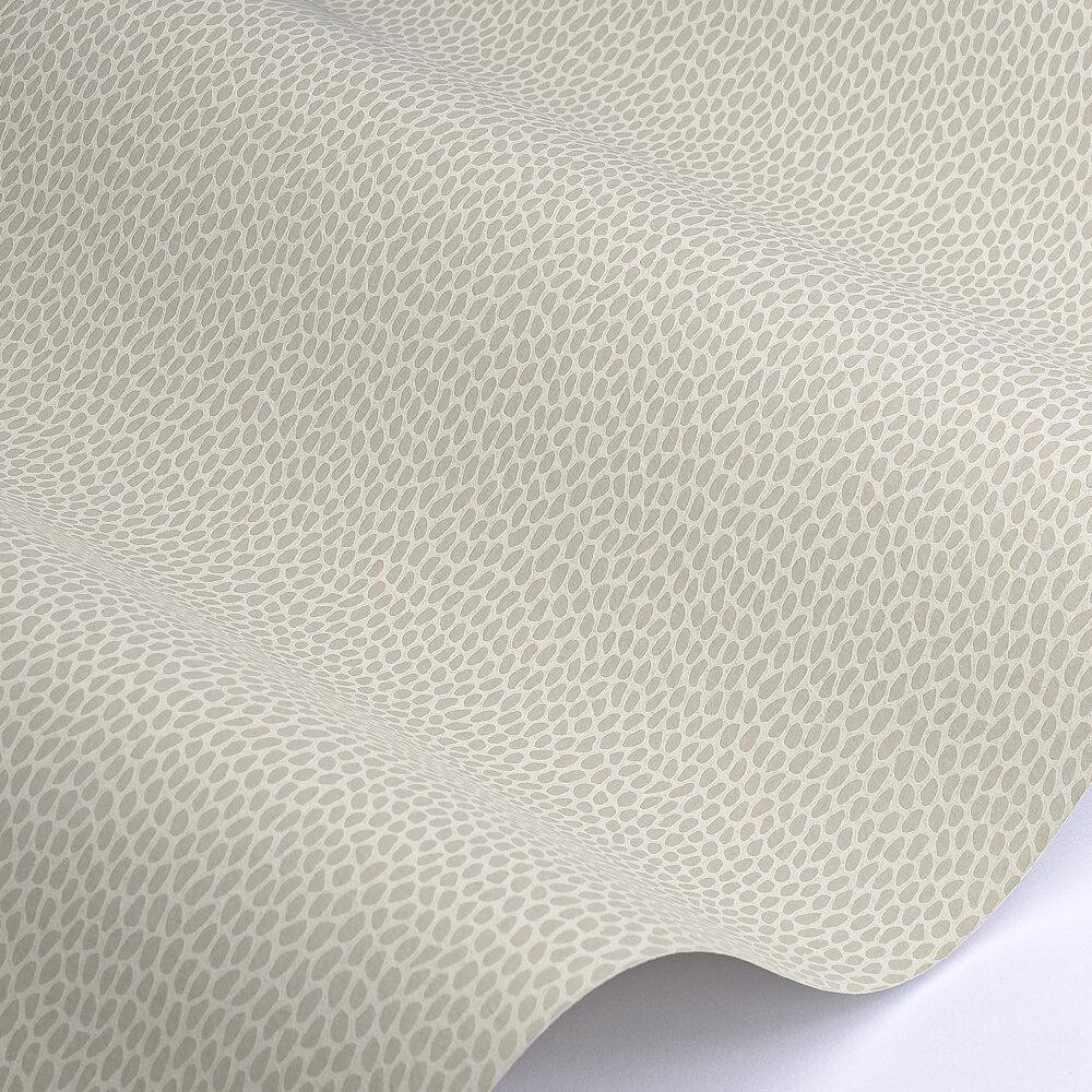 Seedpod Wallpaper - Wattle - by Paint & Paper Library