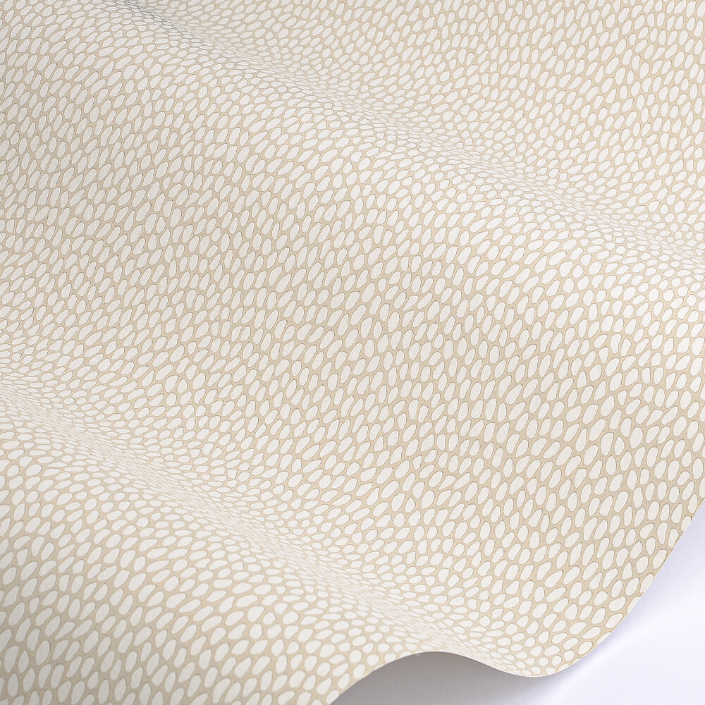 Seedpod Wallpaper - Sand - by Paint & Paper Library