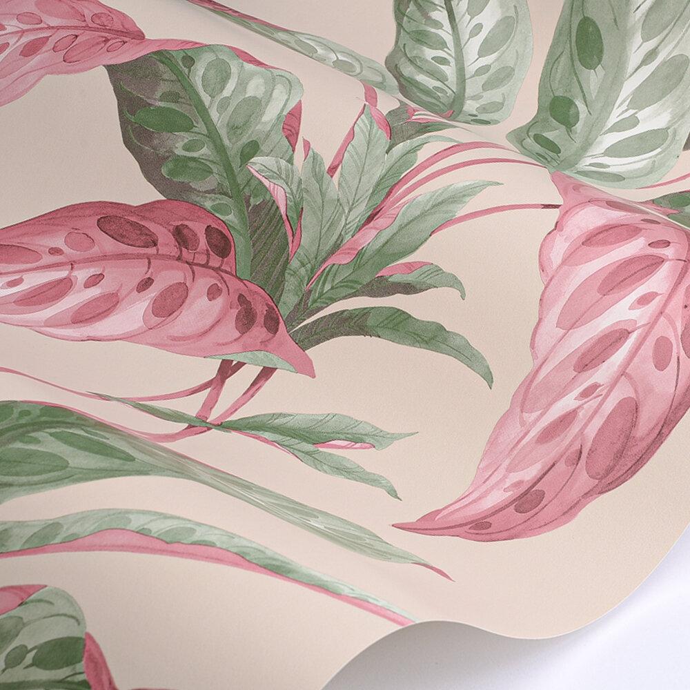 Paint & Paper Library Tropicane Rhubarb Wallpaper - Product code: 0360TRRHUBA