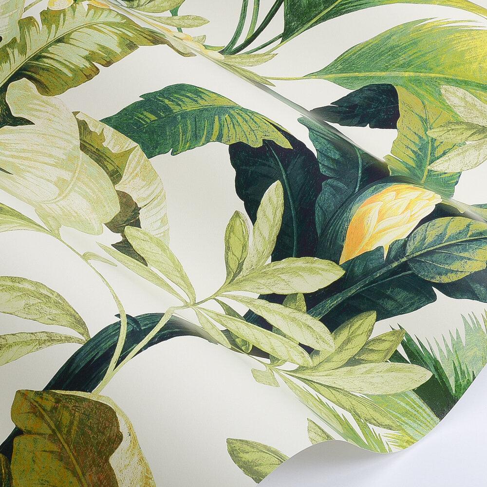 Salengro Wallpaper - Khaki - by Manuel Canovas