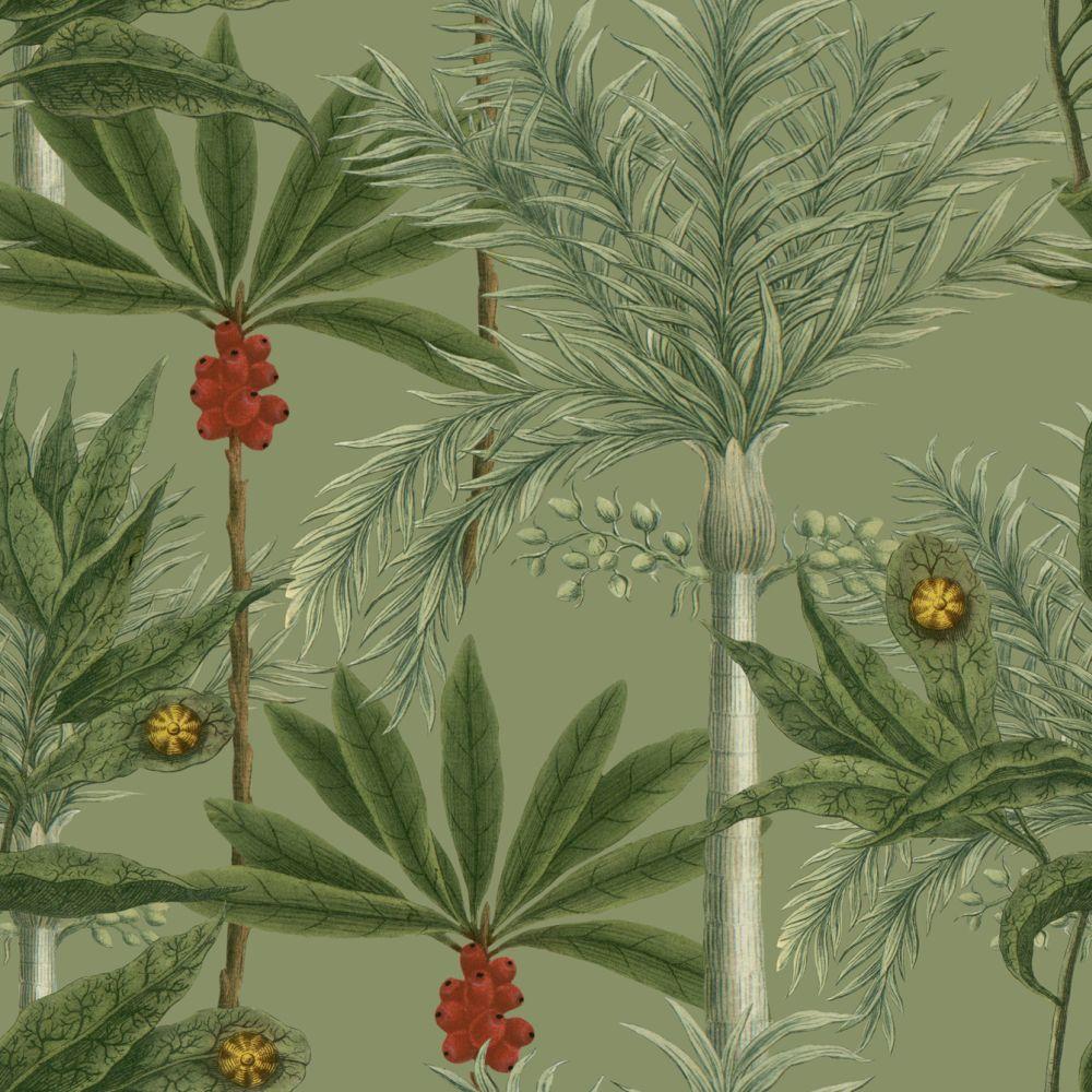 Madagascar Mural - Tea Green - by Mind the Gap