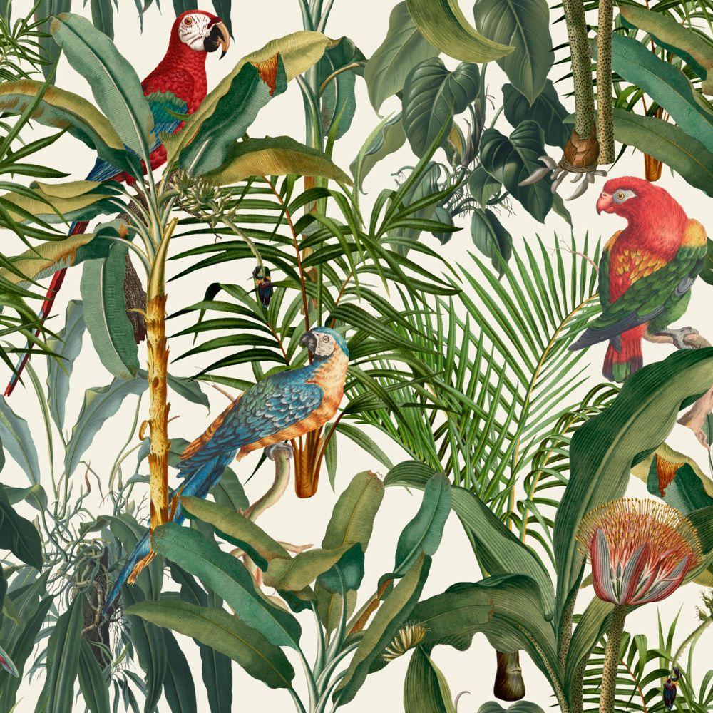 Parrots of Brasil Mural - Light - by Mind the Gap