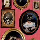 A Cavalcade of Cats