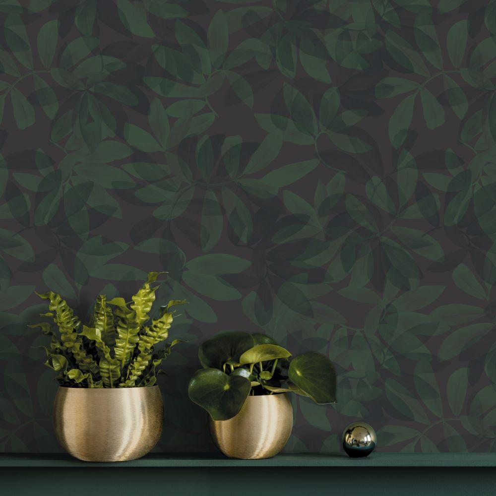 Houdini Wallpaper - Dark Green - by Ted Baker