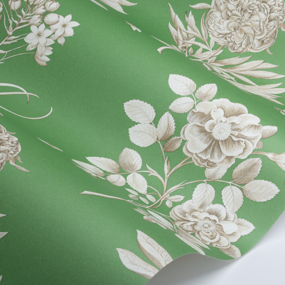 Etchings and Roses Wallpaper - Botanical Green Bright - by Sanderson