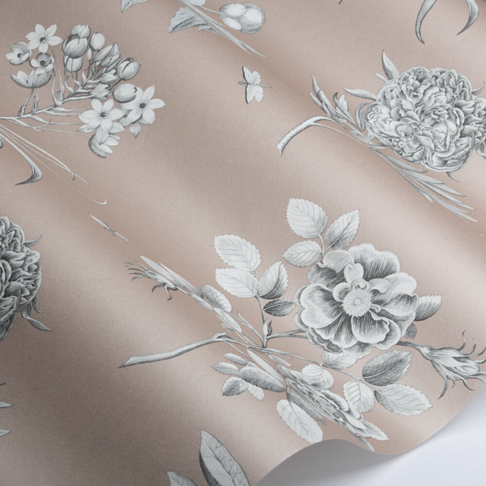 Etchings and Roses Wallpaper - Rose Shimmer - by Sanderson