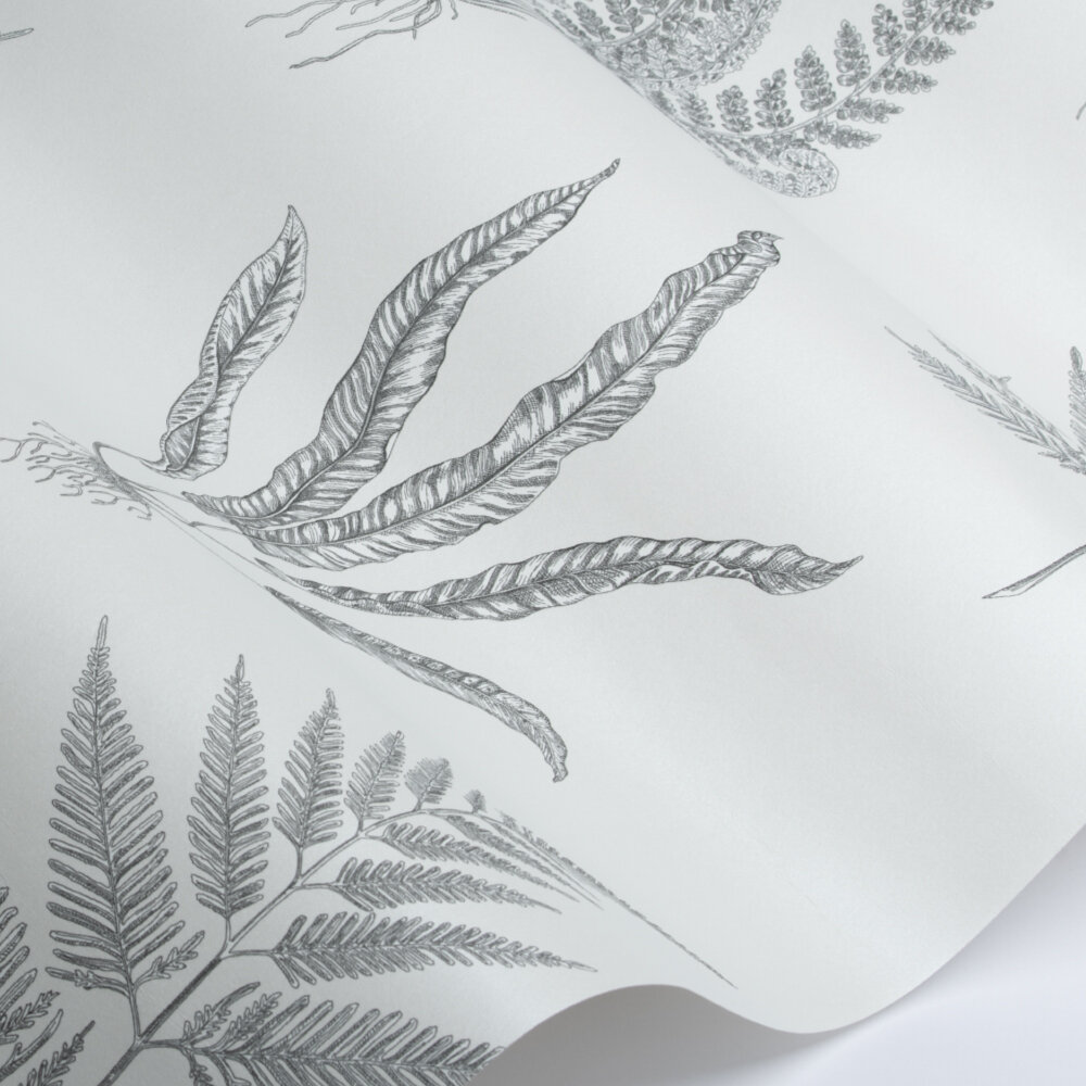 Woodland Ferns Wallpaper - Pearl - by Sanderson