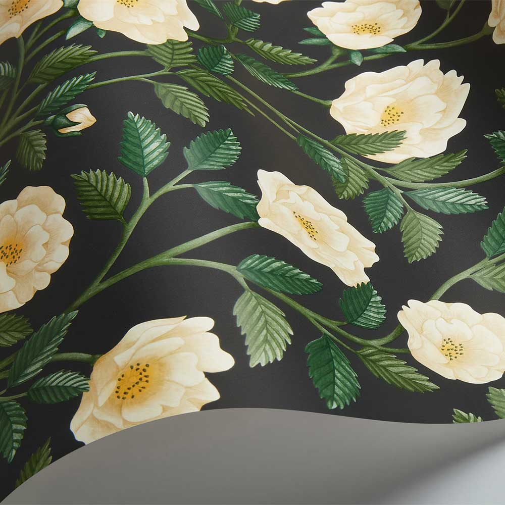 Hampton Roses Wallpaper - Cream / Forest Green - by Cole & Son