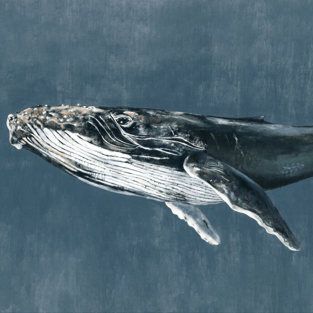Humpback Whale Mural - Vintage - by Coordonne