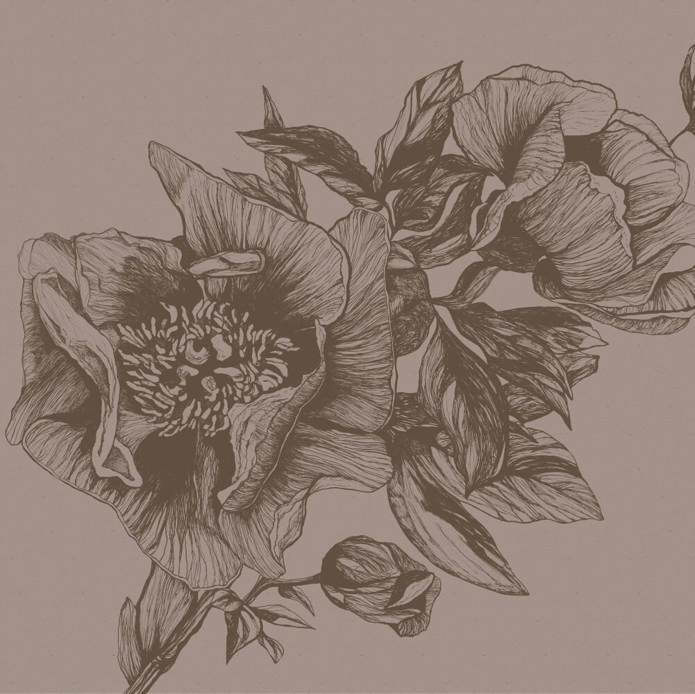 Giant Peonies Mural - Cacao - by Coordonne