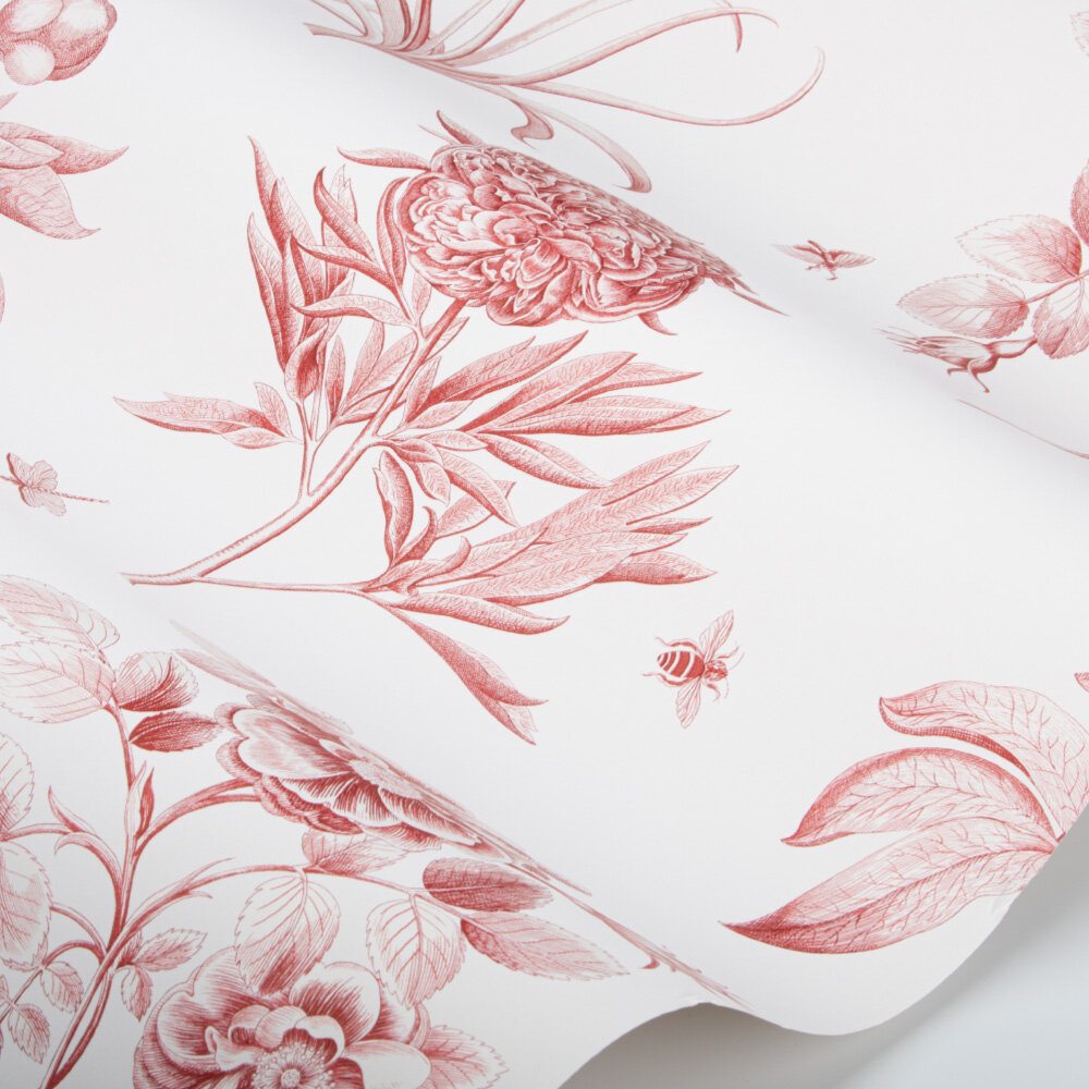Etchings and Roses Wallpaper - Amanpuri Red - by Sanderson